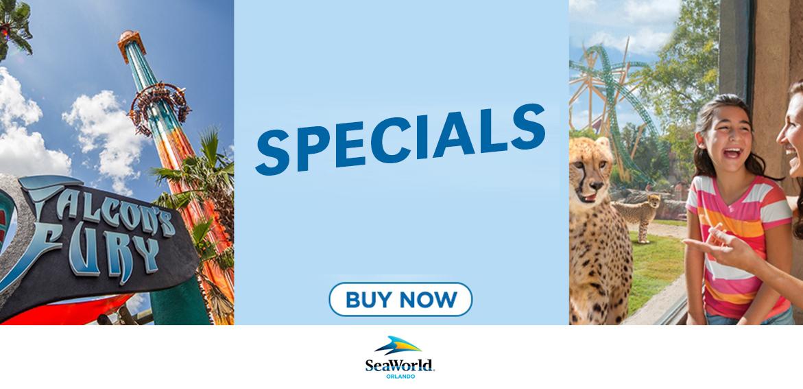 Busch Garden Specials