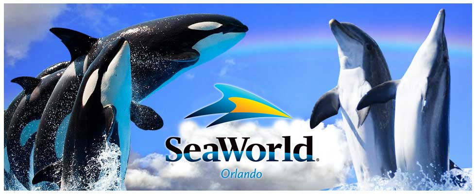 https://greatorlandodiscounts.com/wp-content/uploads/2018/04/seaworld-main-image.jpg